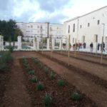 Impianti per aree a verde, parchi e giardini di pregio storico e culturale (Convento degli Agostiniani a Lecce)